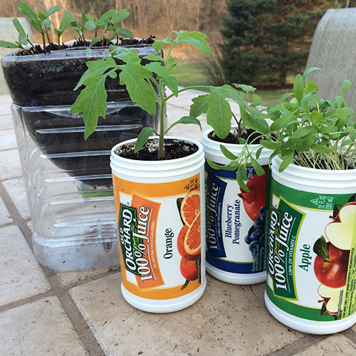Upcycle your Old Orchard juice containers